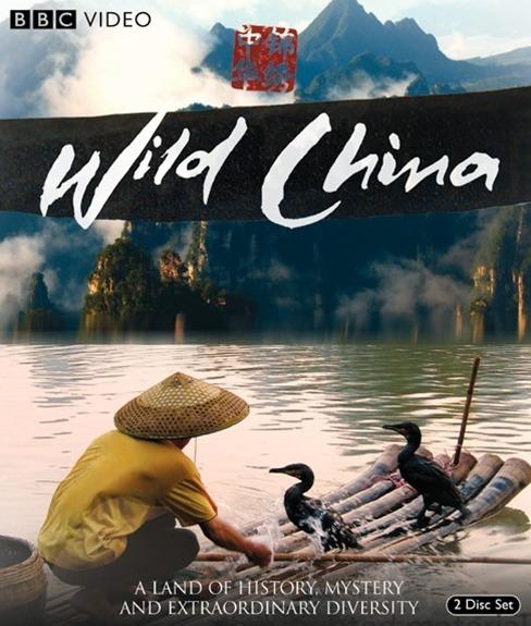 china selvagem